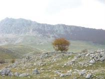 Gole di Celano - Monte San Nicola - Aielli