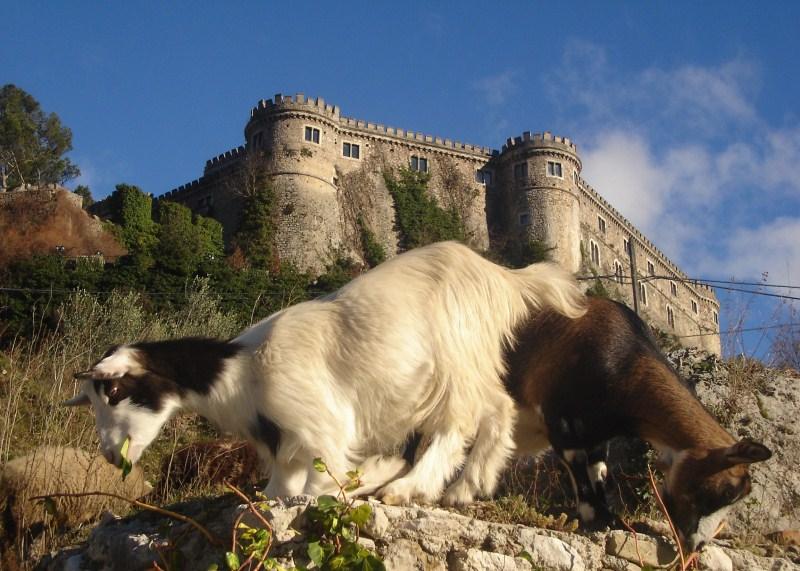 castello_10