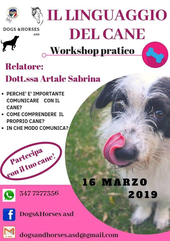 Evento 'Il linguaggio del cane' a Massa D'Albe