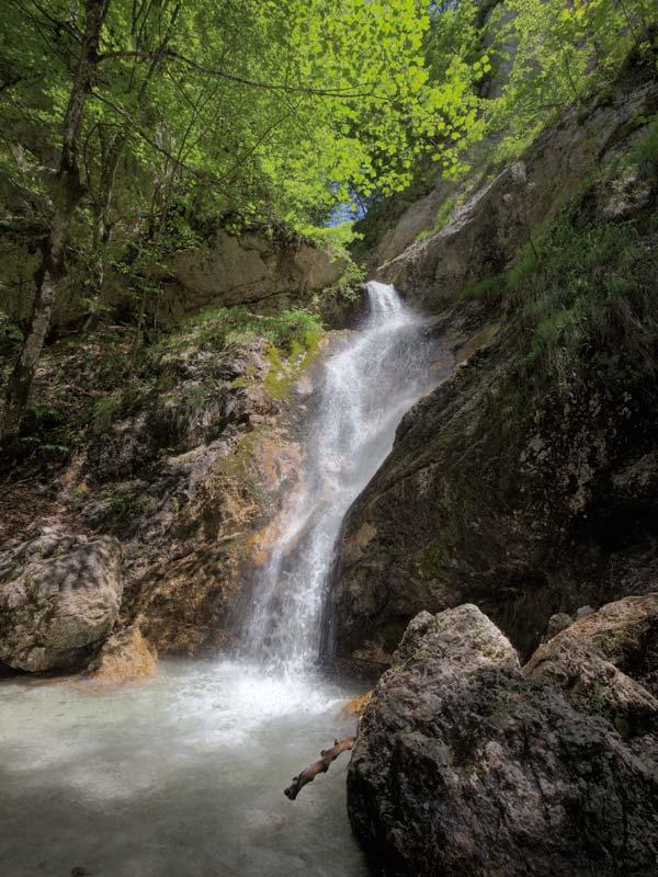 Escursione a piedi da Villetta Barrea alla Camosciara nel Parco Nazionale d'Abruzzo